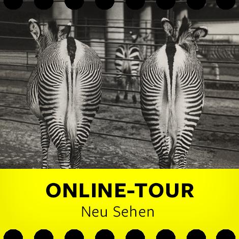 """Exklusive Online-Tour zur Ausstellung """"Neu Sehen"""""""